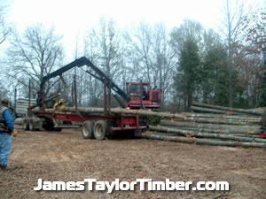 loading log truck in woods east texas