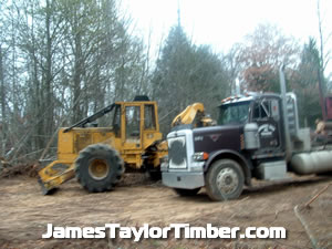 skidder driver job openings texas