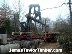 another log loaded in oklahoma